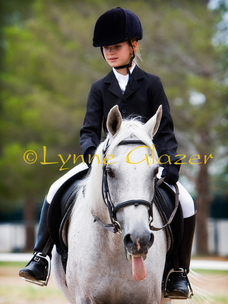 Learning dressage takes two lifetimes -- yours--and your horse's.<br /> -unknown
