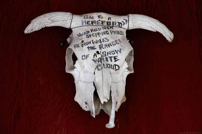 Skull poem