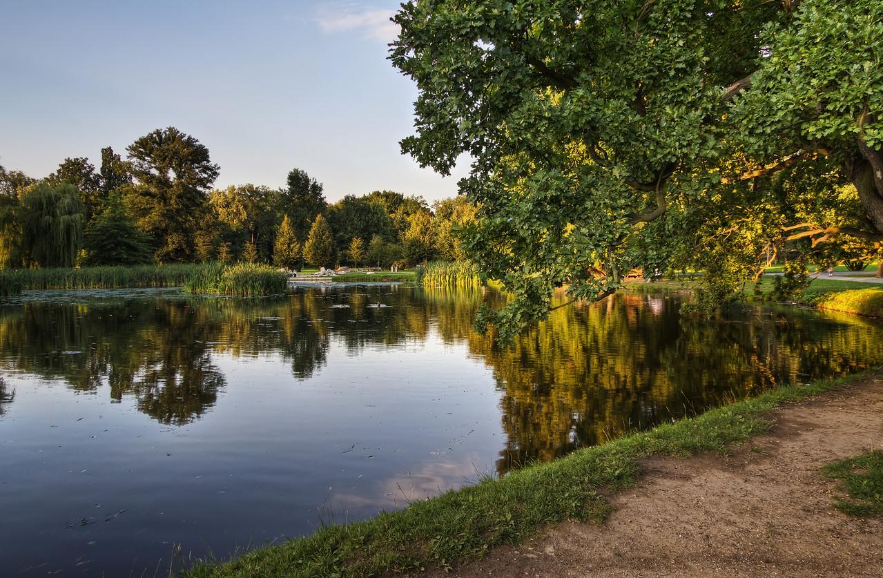 Pond in Stromovka Pond in Stromovka