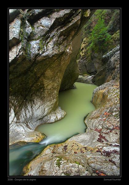 Gorges de la Jogne - Fribourg - Avril 2008