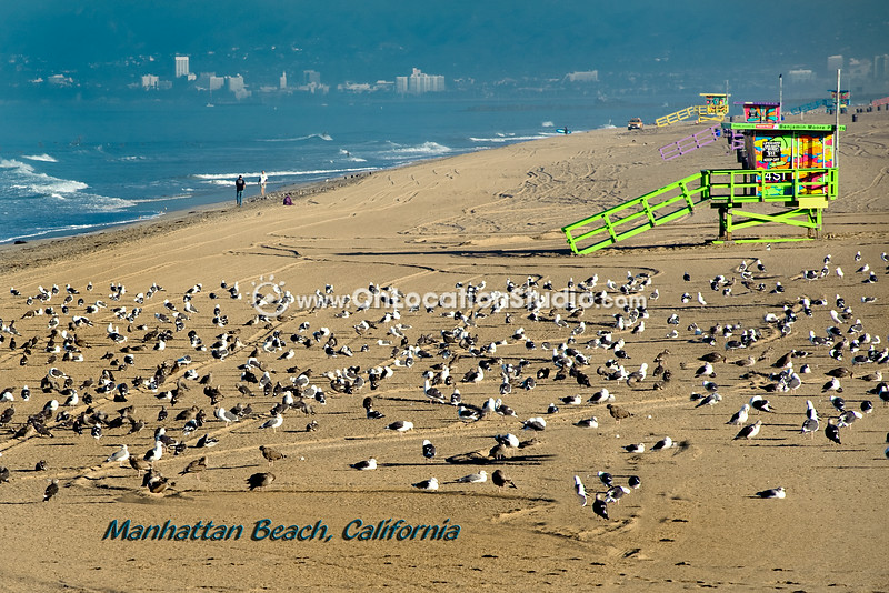 Seaguls and painted lifeguard stands on Manhattan Beach