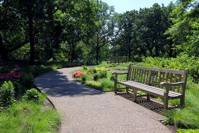 NY Botanical Gardens - walk path