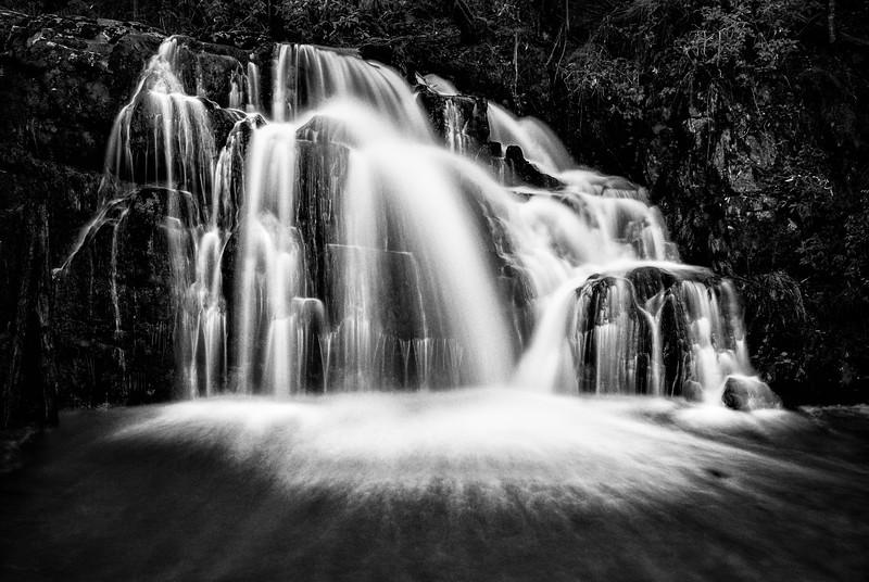 Upper Lilleydale Falls Mono