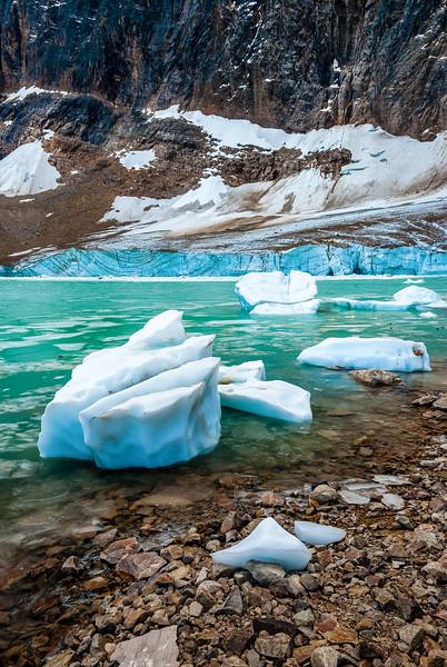 Edith Cavell Glacier 1