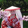 Japanese Festival, Brooklyn Botanical Gardens