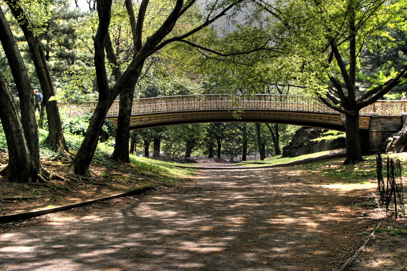 Central Park Pine Bank Bridge