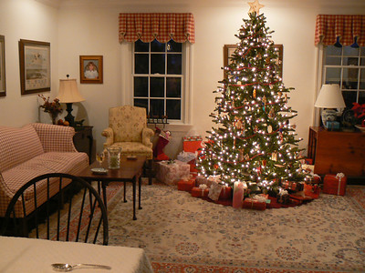 Christmas 2006... the first year we had an artificial tree.  Looks pretty good, doesn't it?