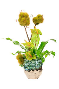 Floral arrangement created by Howard Arendtson of H. Julien Designs. http://www.hjuliendesigns.com
