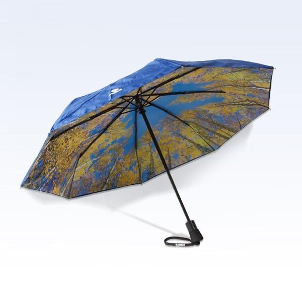 Umbrella, special transparent design