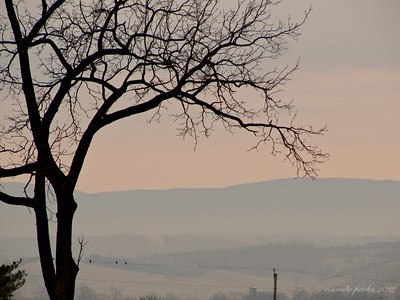 1-26-12- Morning on Mole Hill