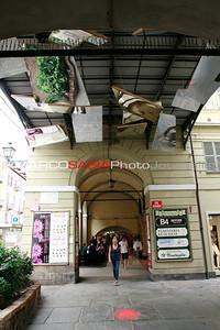0018-Zoo-in-Città