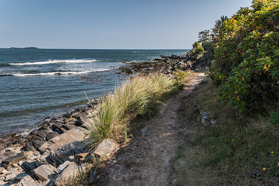Cliff Walk 1
