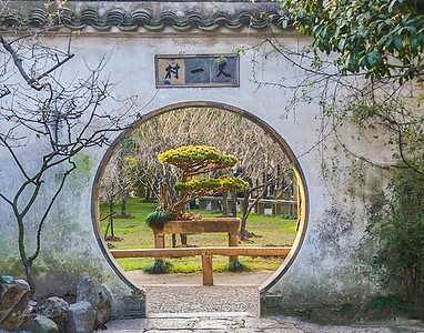 IMG_4356 盆景 Suzhou-Edit