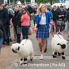 QMS_Miss_Scotland_AR