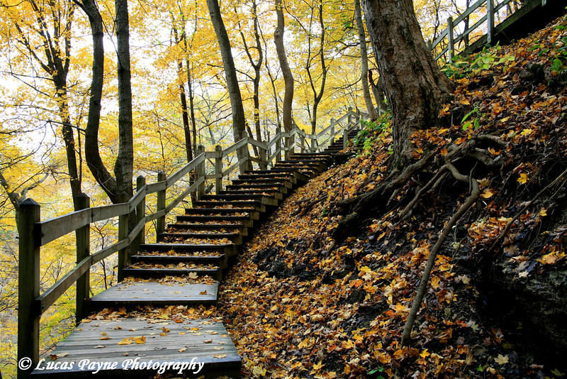 """<div class=>Steps leading down to Bridal Veil Falls at Pikes Peak State Park in Northeast Iowa was published in the Oct/Nov 2008 issue of """"Our Iowa"""" magazine.</div>"""