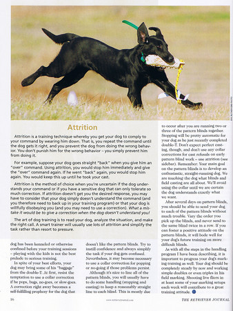 Published in The Retriever Journal, June/July 2010