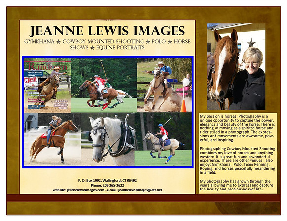 Flyer used for CT Gymkhana Association exhibit at 2012 3rd Annual Agriventures Agway Equine & Pet Event