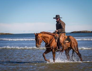 Western Horseman Cover Image February 2017