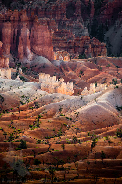 Light on the Hoodoos #1