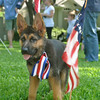 Franklin Tucker von Orumhaus celebrated July 4th with his new family.