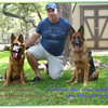 Yule von Orumhaus at 7 months old. (left GSD)