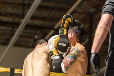 Muay Thai Fight Night IV- Fights -  1489