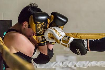 Muay Thai Fight Night IV- Fights -  1199