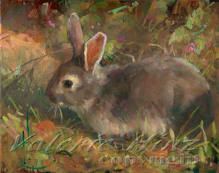 Dark Grey Bunny 8x10