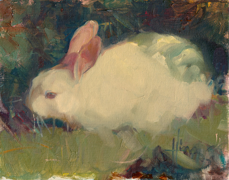 Sun Bunny 8 x 10<br /> PRIVATE COLLECTION