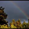 Smithers Rainbow