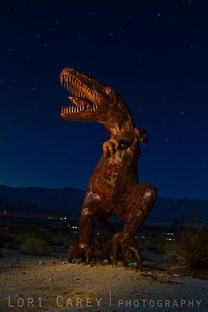 Night photograph of Tyrannosaurus Rex sculpture by Ricardo Braceda for the Galleta Meadows Sky Art installation.