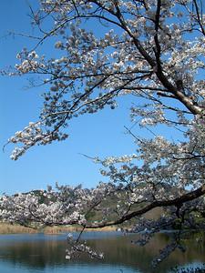 Midoragaike Pond