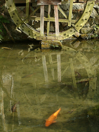 Koi and Waterwheel