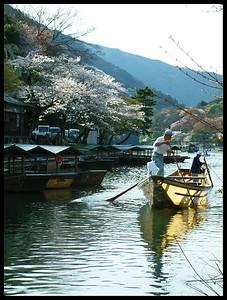 Arashiyama, Kyoto during cherry blossom season.