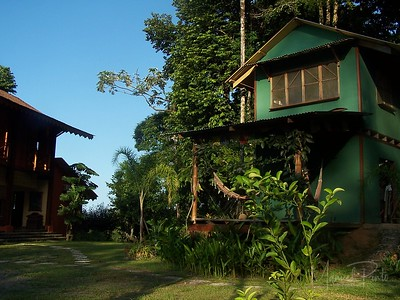 The Guest Tree House