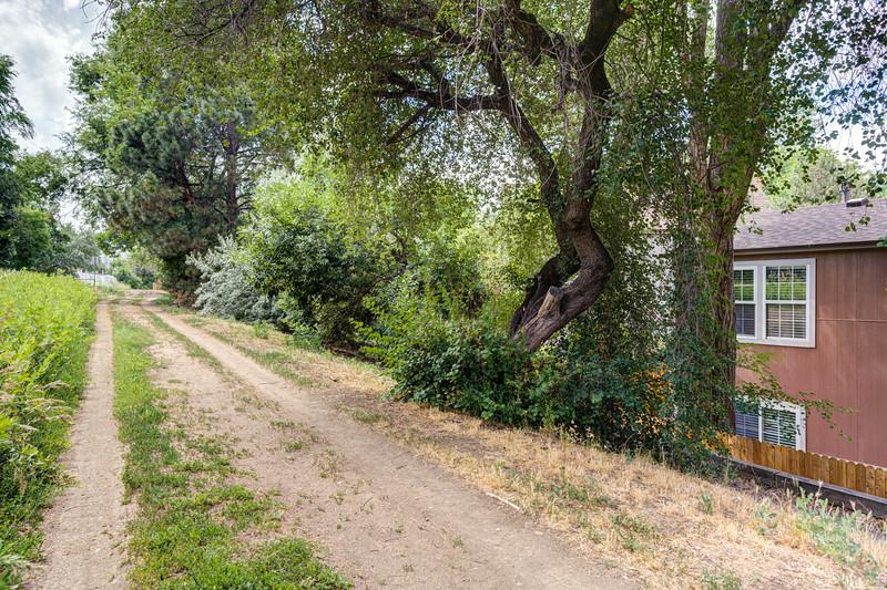 Back Walking Trail 2
