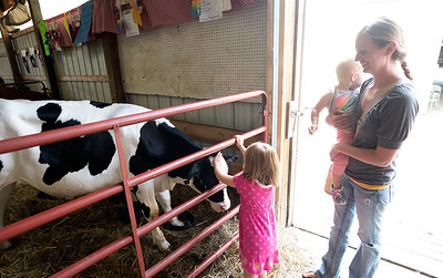 2018 Chelsea Community fair.  Cows and kids. (Photo by Mark Bialek)