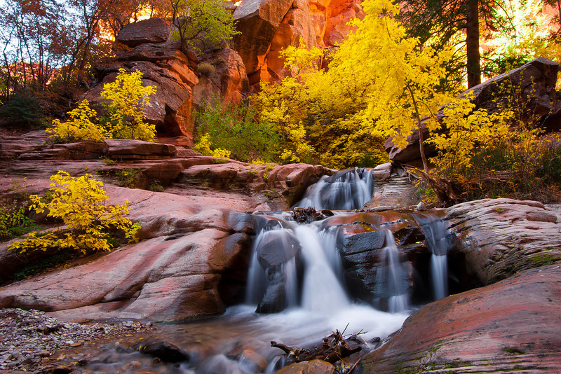 """""""Stream in Fall Colors"""""""