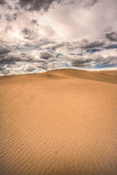"""""""Sahara?"""""""