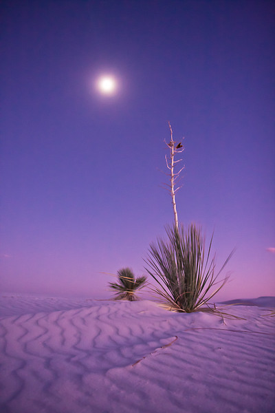 """White Sands Nights"""