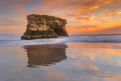 Natural Bridges State Beach, Santa Cruz, California.