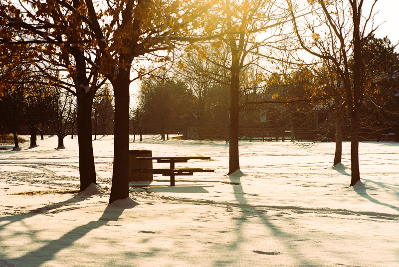 Winter sun setting in the park