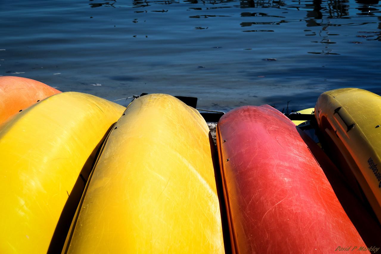 Vibrant Canoes