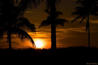 Golf Course Sun