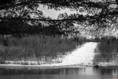 Trail Sighting