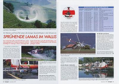 Cockpit - Sprühende Lamas im Wallis  Sep 2000