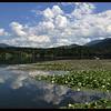 Summer Cloud Reflections