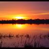Sunrise over Turkey Lake on Valentines Day