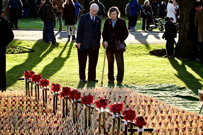 Members of the public view Poppies at the Inverness Remembrance Service and Parade.  Picture: Paul Campbell
