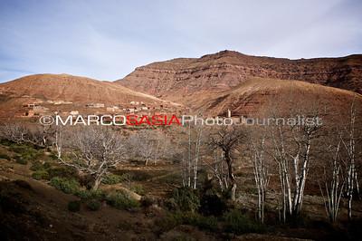 0140-Marocco-012